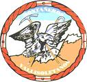Logo CDMV